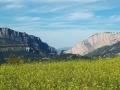 montsec-lagunas-humedal-estanya-azafran-del-pirineo-09